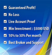 GK Forex  Auto Trading Software,  Managed Accounts,   Canada