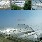 Ontario Greenhouse Clear 8mil Poly Plastic Covering